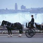 Four Points by Sheraton Niagara Falls - Romantic Horse & Carriage Ride
